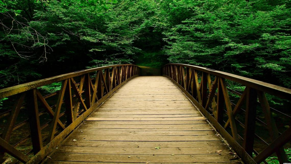 Bridge-Bridges-Nature-Forest-Forests-Wallpaper-hd-wallpaper-1920x1080-6-50a1a17161d8e-5066